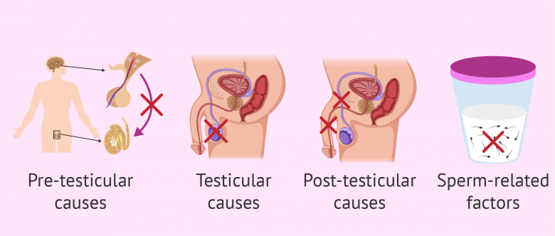 how to tell if you are infertile female