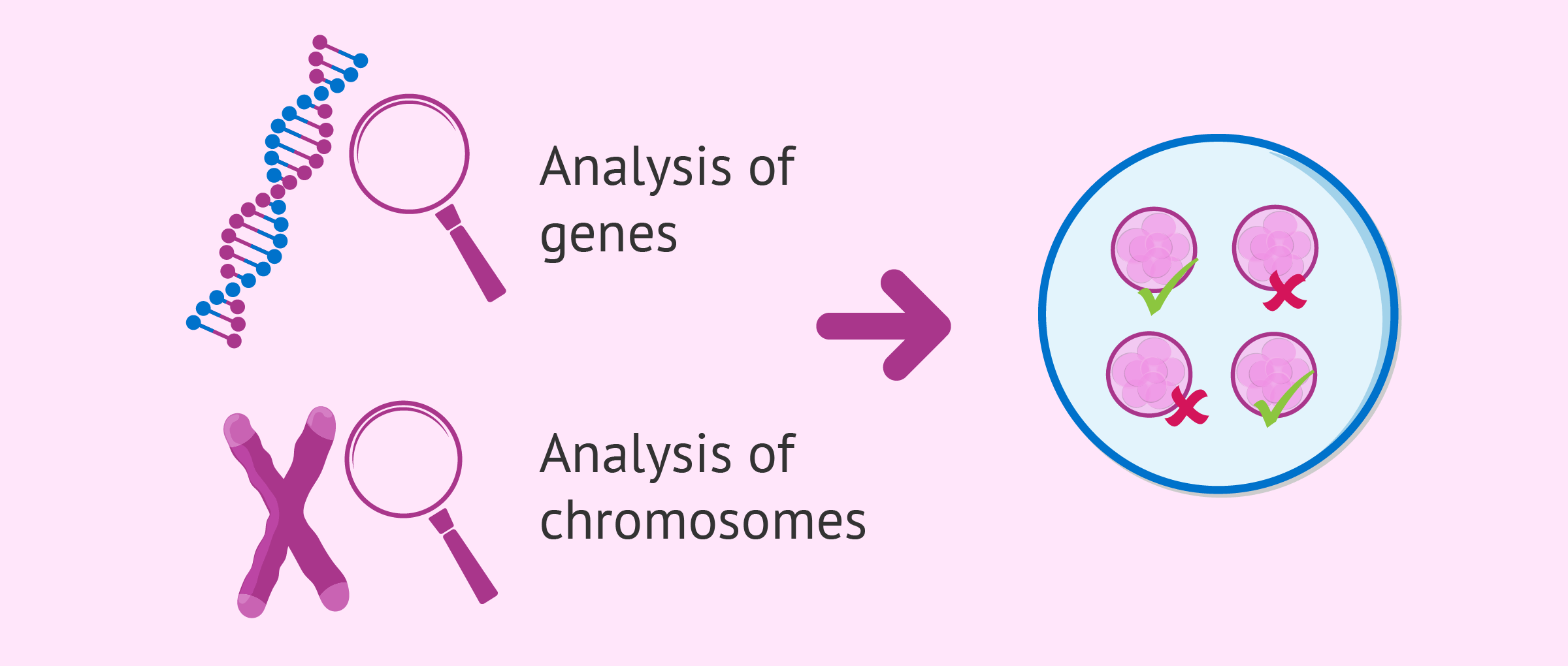 PGD and genetic diseases