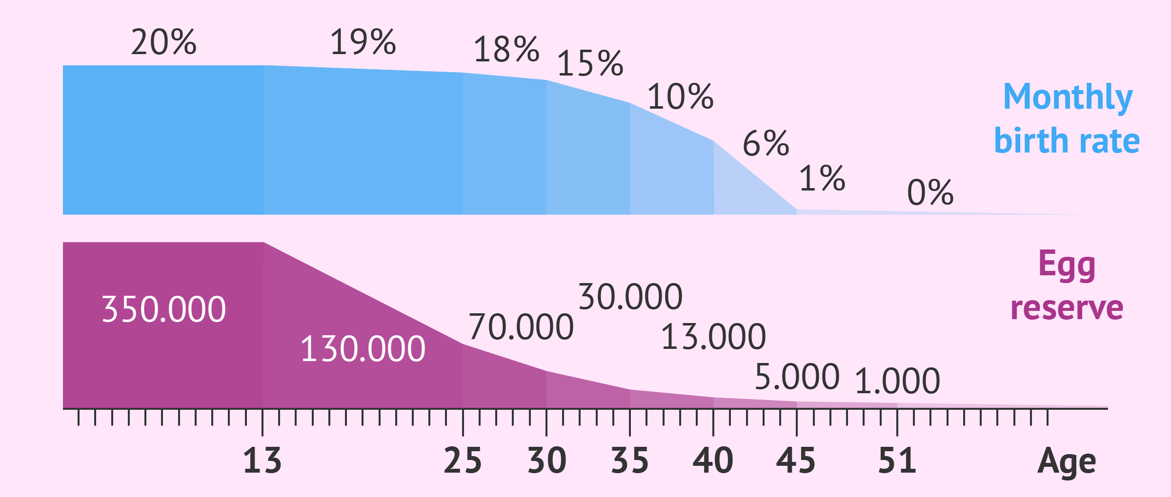 How Many Eggs Does a Woman Have? - Your Egg Count by Age