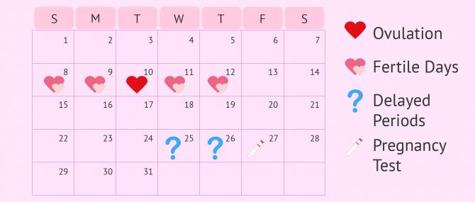 Imagen: Pregnancy Test Calendar