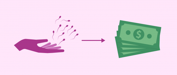 Average compensation payment given to sperm donors