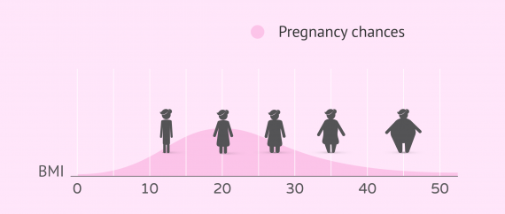 What BMI is good for pregnancy?