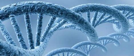 Alterations DNA