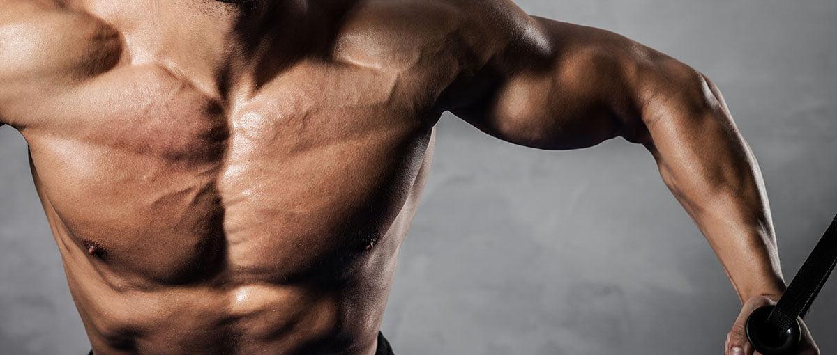 Artificial testosterone reduces fertility