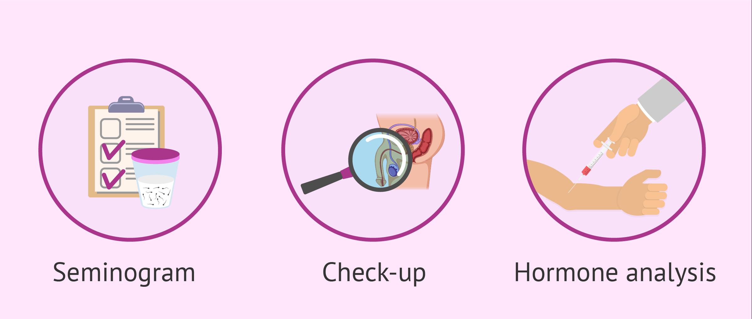 Imagen: Male sterility tests