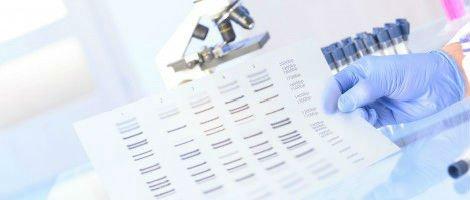 FISH or CCS (Comprehensive Chromosome Screening)