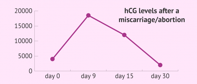 hCG Levels After a Miscarriage or a Medical Abortion