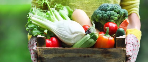 Foods to increase endometrial thickness