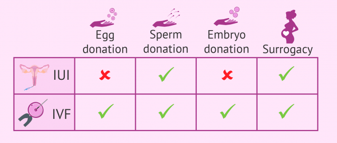 Fertility treatments in combination with third-party reproduction