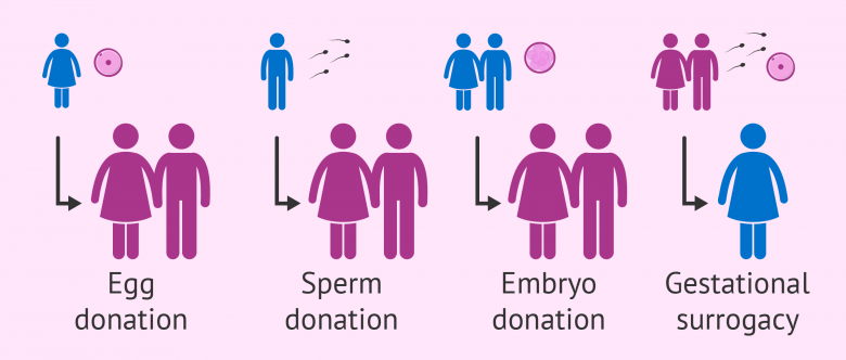 sperm cryopreservation and Embryo