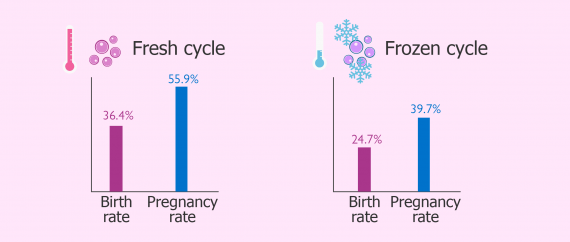 IVF results for fresh and frozen donor egg cycles