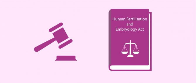 Egg Donation & UK Law – What Does the HFE Act 2008 Say?