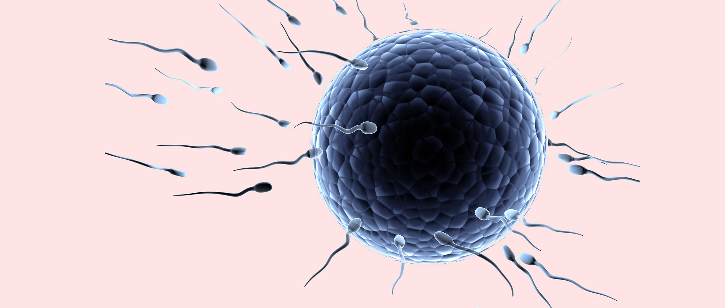 Donor-egg IVF in Greece