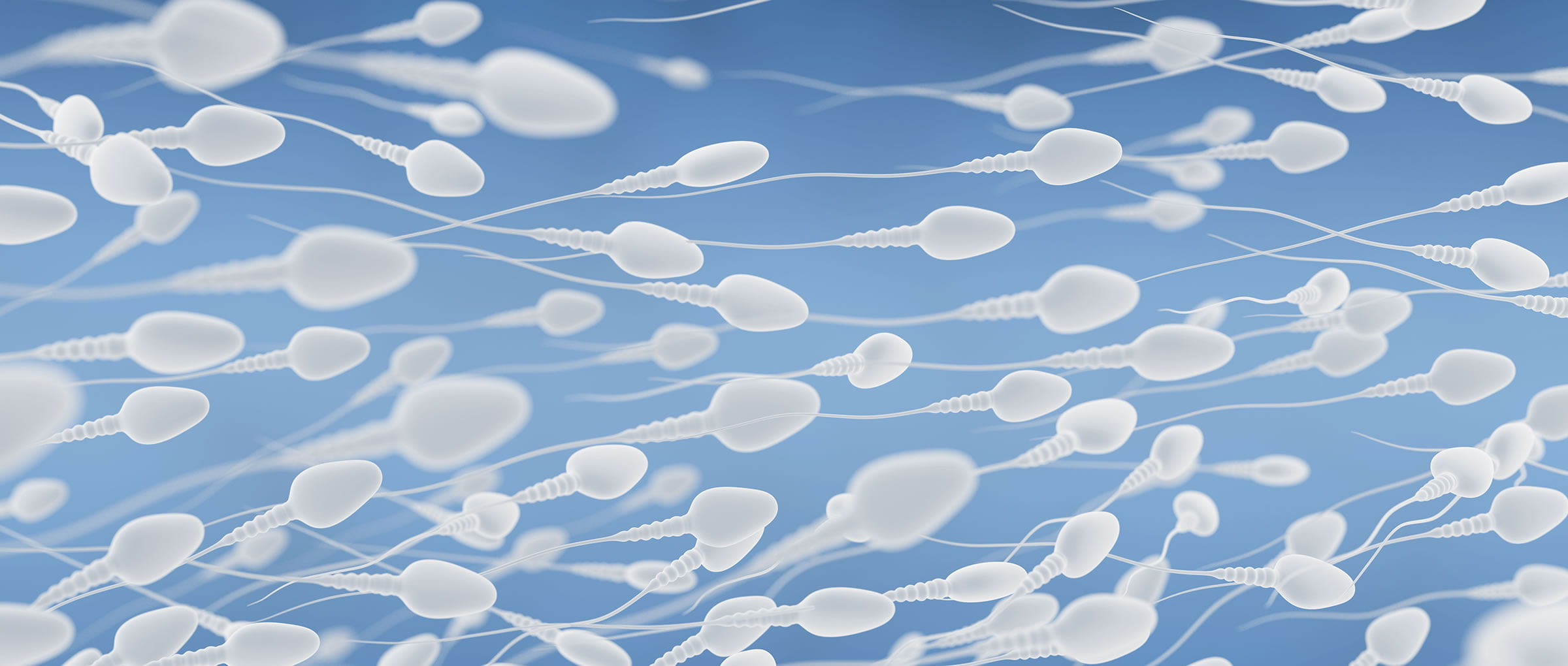 IVF with Donor Sperm in Spain - Indications, Process & Cost