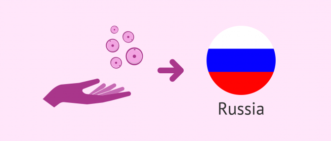 How Does Egg Donation Work in Russia?