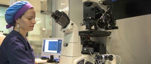 Clínica Crea laboratory and embryology