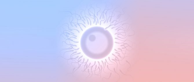 IVF with Both Donor Eggs & Donor Sperm in Spain
