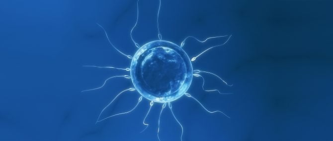 Fertility treatments using donor sperm or eggs in Spain