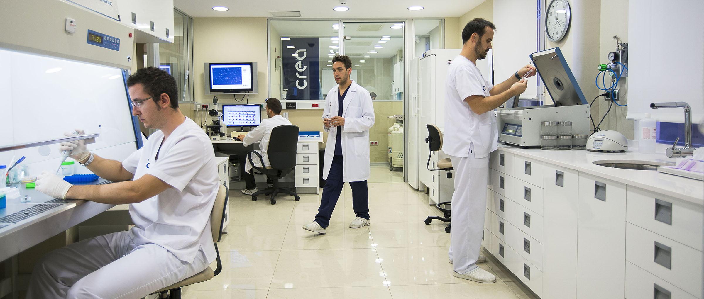Emrbyology clínica Crea