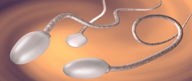 Poor-quality sperm