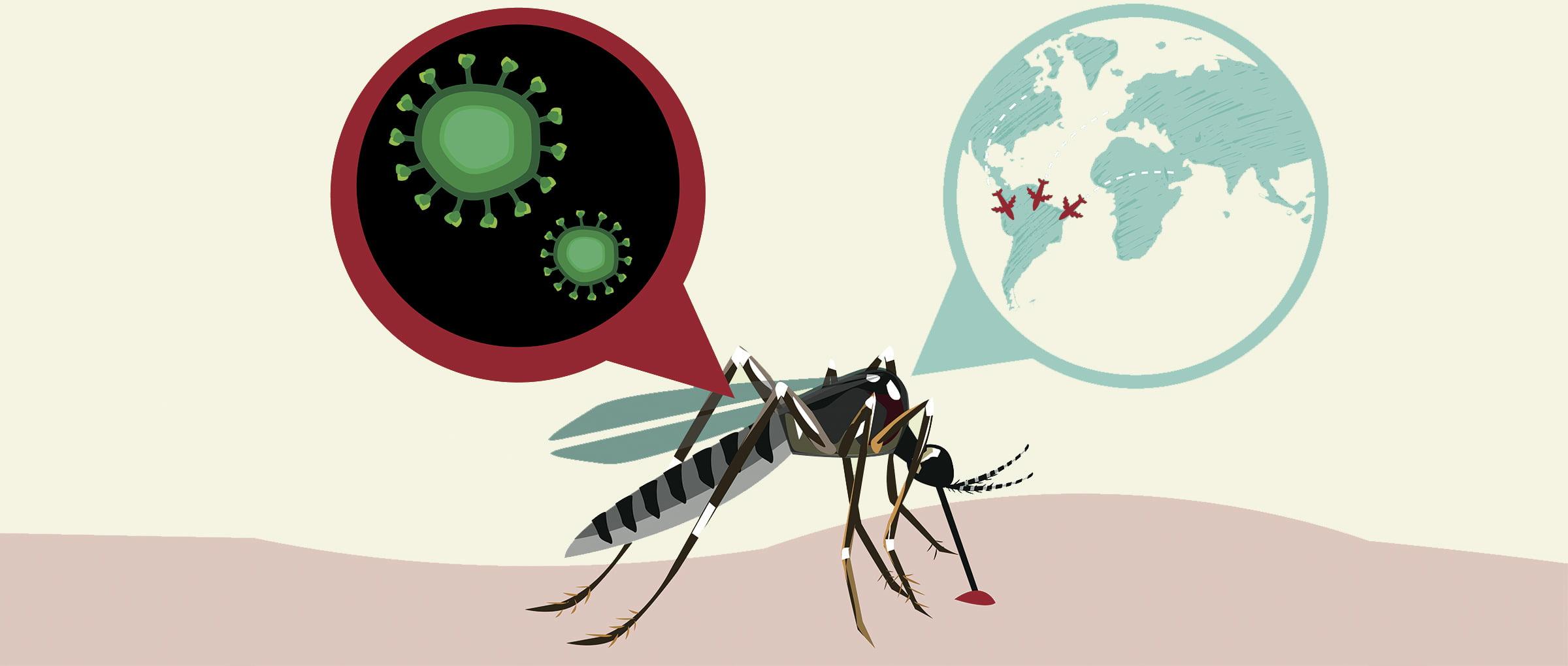 Zika virus while pregnant