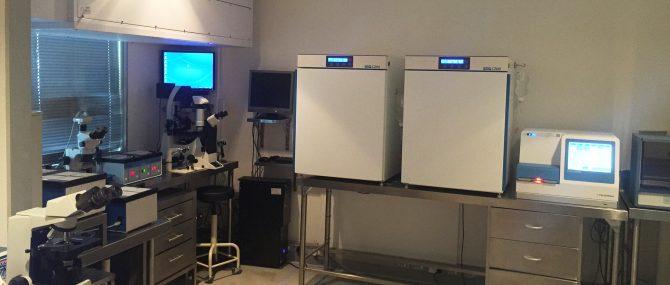 Cape Fertility Clinic IVF laboratory
