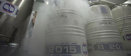 Serum IVF cryopreservation