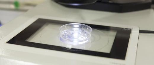 Serum IVF in vitro fertilization