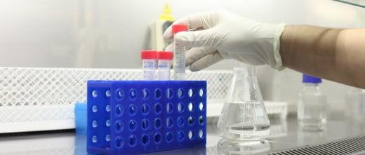 Serum IVF laboratory