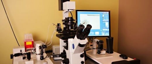 Dogus IVF Cyprus laboratory