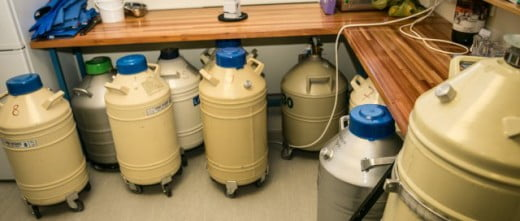 Medfem Liquid Nitrogen Storage Tanks