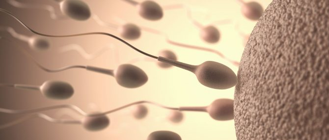 Best destinations in Greece for assisted conception