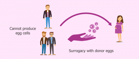 Gestational surrogacy for gay couples