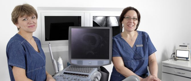 Human Reproduction Problems Clinic gynecological consultation