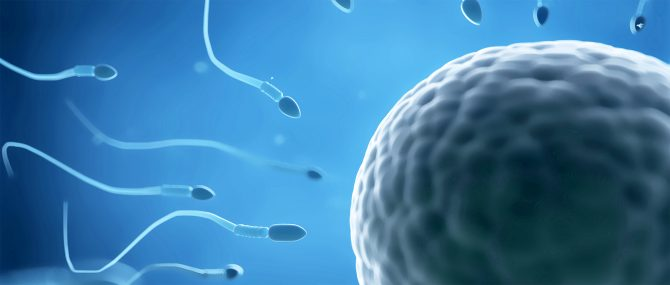 Both egg and sperm donation