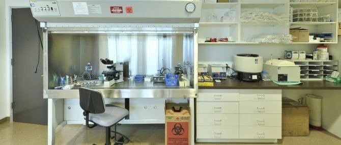 Coastal fertility IVF laboratory