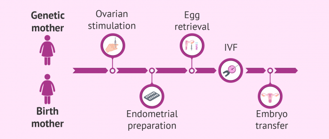 Shared maternity or reciprocal IVF