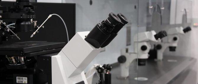 IVF laboratory Fertility Madrid