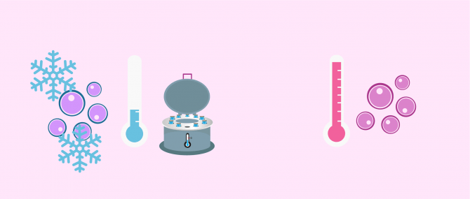 Egg donation: fresh vs. frozen cycle