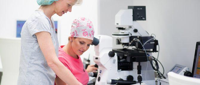 IVF Cube Embryological laboratory