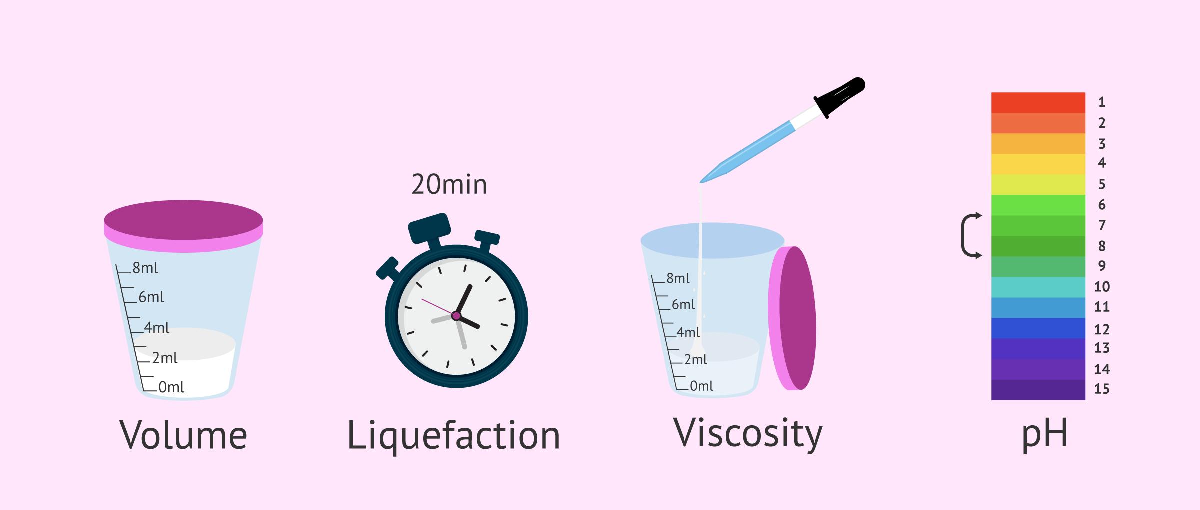 Macroscopic analysis of semen sample
