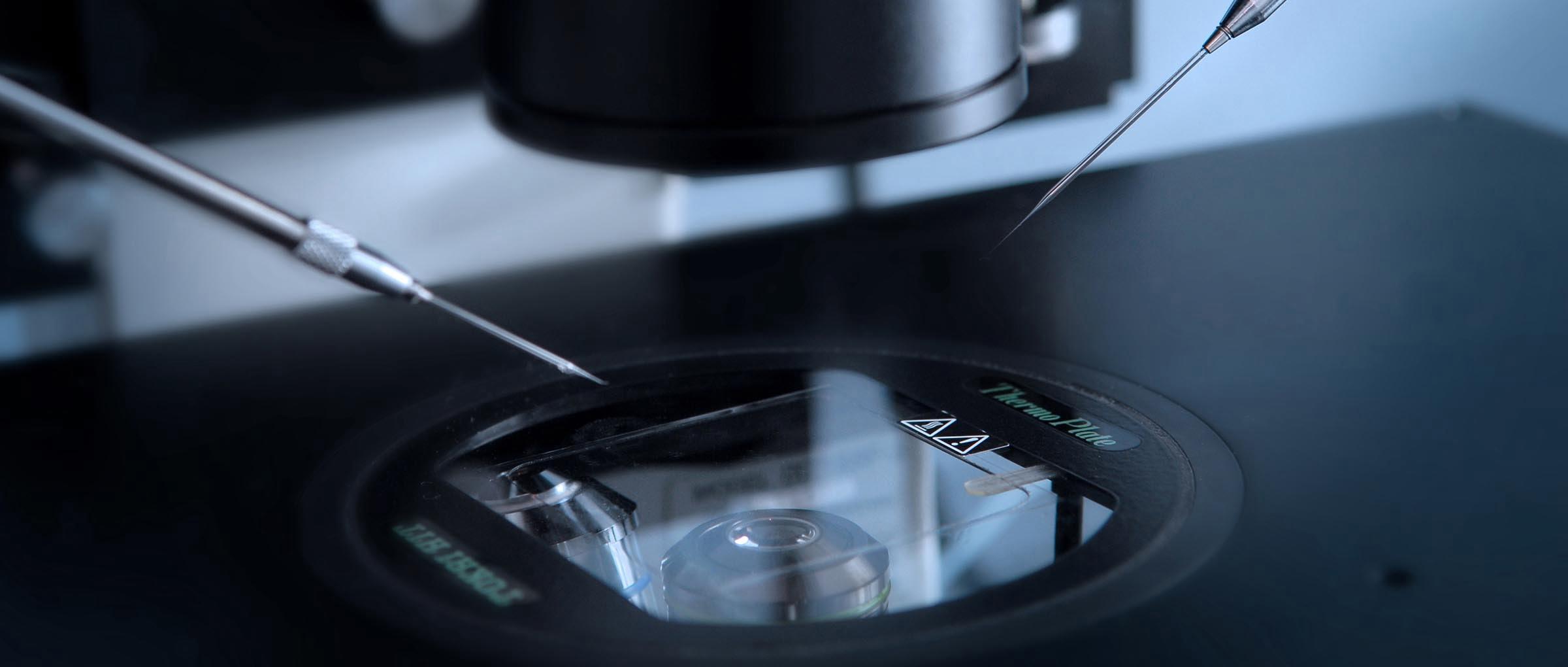 Ledra Clinic IVF