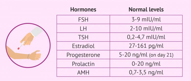 Normal estradiol levels in males