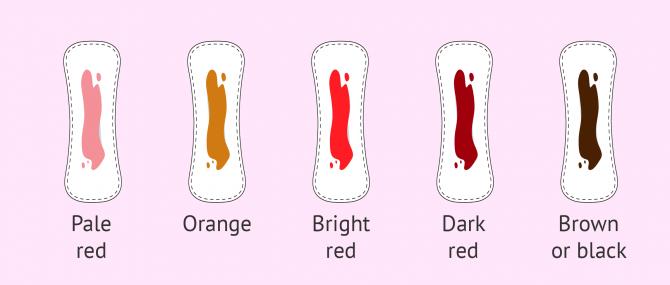 Imagen: colors of bleeding