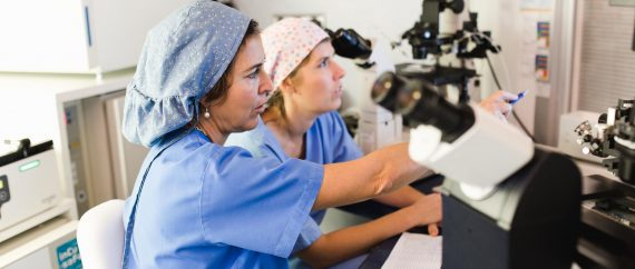 Fertilab embryology lab