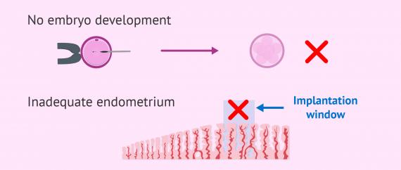 Reasons to cancel IVF embryo transfer