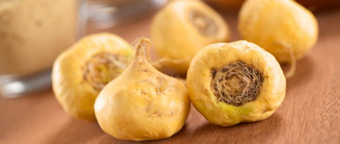 Maca for male infertility
