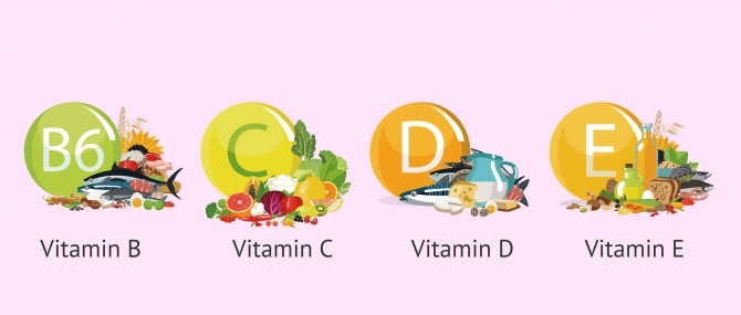 Which Types of Foods Have a Positive Influence on Female Fertility?