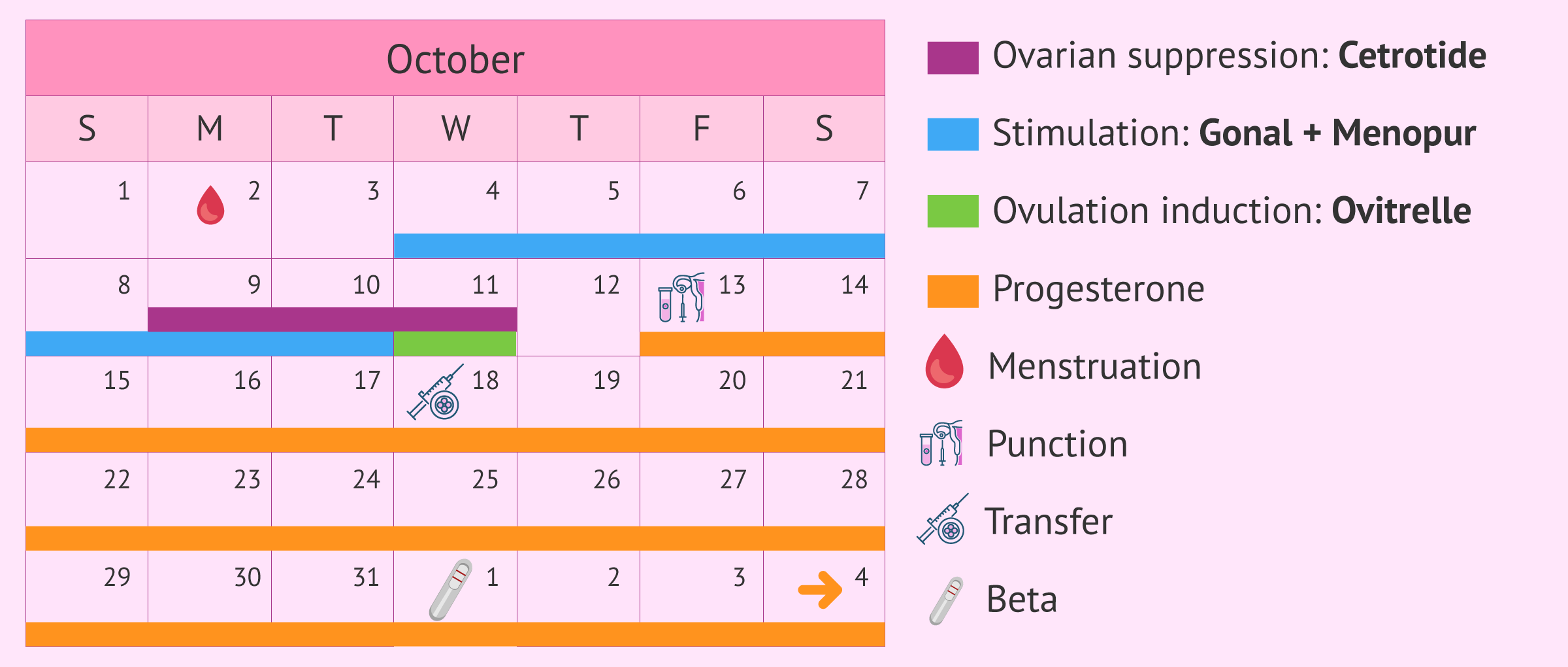 Calendar for short stimulation protocol