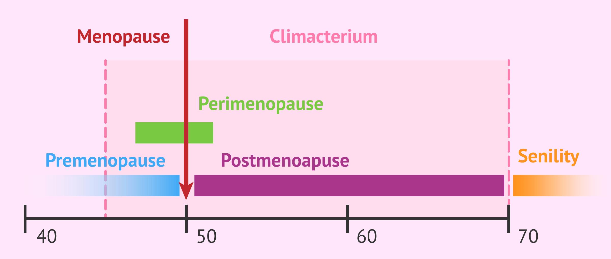 Imagen: climacterium fases